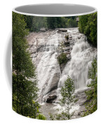 High Falls At Dupont Forest Coffee Mug