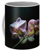 Highlighted Orchids Coffee Mug