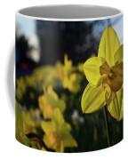 Highway Daffodil Coffee Mug