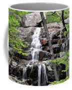 Highway E Falls 9 Coffee Mug