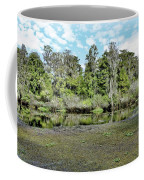 Hillsborough River 1 Coffee Mug