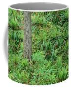 Hillside Ferns Coffee Mug