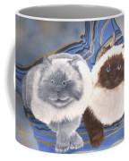 Himalayan Cats  Coffee Mug