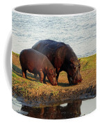 Hippo Mother And Child - Botswana Africa Coffee Mug