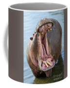Hippo's Open Mouth Coffee Mug by Yair Karelic