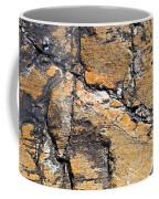 History Of Earth 4 Coffee Mug