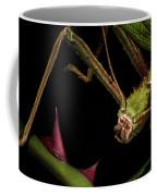 Hmmm, Interesting Coffee Mug