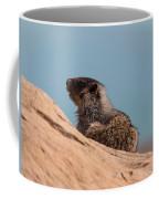Hoary Marmot On Blue Coffee Mug