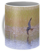 Hobby Skimming Water Coffee Mug