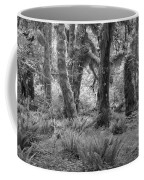 Hoh Rain Forest 3371 Coffee Mug
