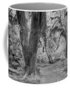 Hoh Rain Forest 3378 Coffee Mug