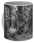 Hoh Rain Forest 3389 Coffee Mug