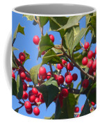 Holly Berries On A Wintry Day I Coffee Mug