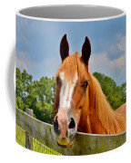 Holly Springs Coffee Mug
