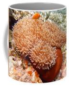 Home Of The Clown Fish 2 Coffee Mug