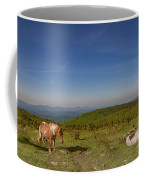 Home On Therange  Coffee Mug