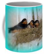 Home Sweet Home #2 Coffee Mug