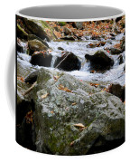 Hometown Series - Blue Ridge Parkway  Coffee Mug