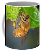Honeybee Coffee Mug