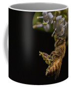 Honey Bee Kick, Apis Mellifera Coffee Mug