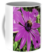 Honey Bee On A Spring Flower Coffee Mug