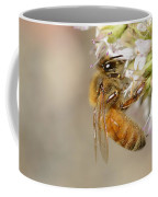 Honey Bee On Herb Flowers Coffee Mug