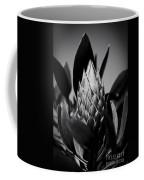 Honey Pot King Sugar Bush Protea Coffee Mug