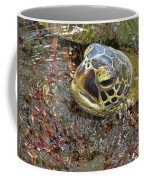 Honu In The Water Coffee Mug