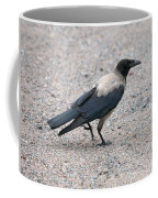 Hooded Crow Coffee Mug