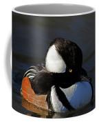 Hooded Merganser Coffee Mug