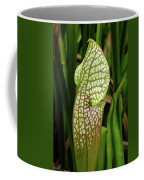Hooded Pitcher Plant Coffee Mug
