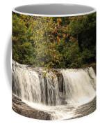 Hooker Falls Coffee Mug