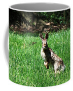 Hop Coffee Mug