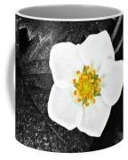 Hope Tucked Away In The Petals  Coffee Mug