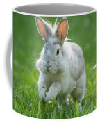 Hopping Rabbit Coffee Mug