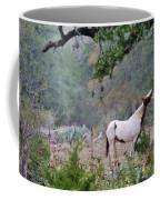 Horse 019 Coffee Mug