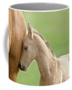 Horse And Colt Coffee Mug