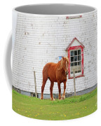 Horse At Panmure Island Lighthouse 5756 Coffee Mug