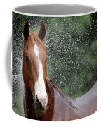 Horse Bath I Coffee Mug