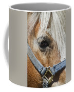 Horse Close Up Coffee Mug