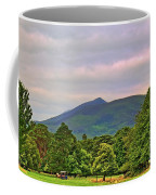 Horse Drawn Carriage At Muckross House Coffee Mug