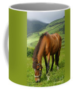 Horse Grazing Coffee Mug