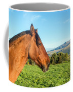 Horse Head Closeup Coffee Mug