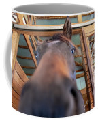 Horse Hello Coffee Mug