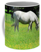 Horse In A Field Of Flowers Coffee Mug