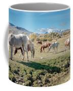 Horse Pasture Coffee Mug