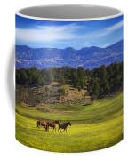 Horse Play Coffee Mug