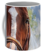 Horse Portrait Closeup Coffee Mug
