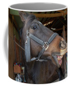 Horse Snack  Coffee Mug