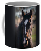 Horse Whispering Coffee Mug